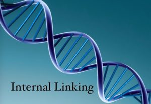 Internal Linking Plan