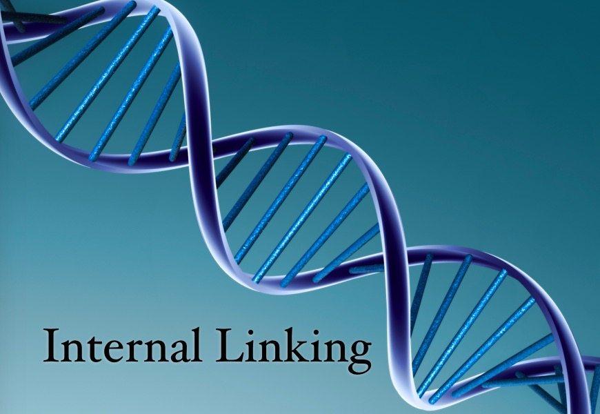 Internal Linking Plan