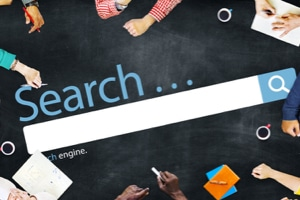 organic search engine optimization seo