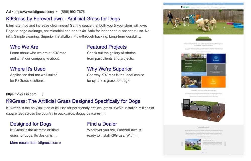 k9grass-case-study-ads-google