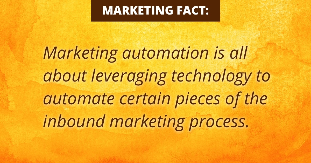 Marketing-Automation-Snippet-2